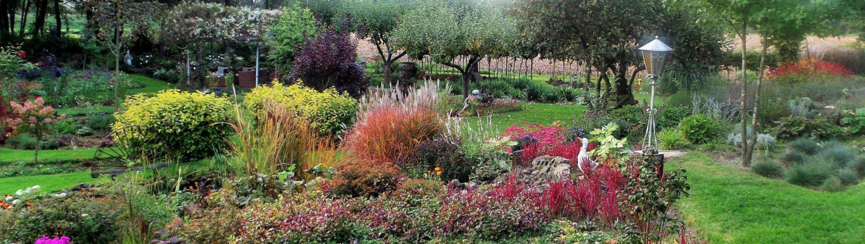 Gartenfreunde Grafschaft Bentheim